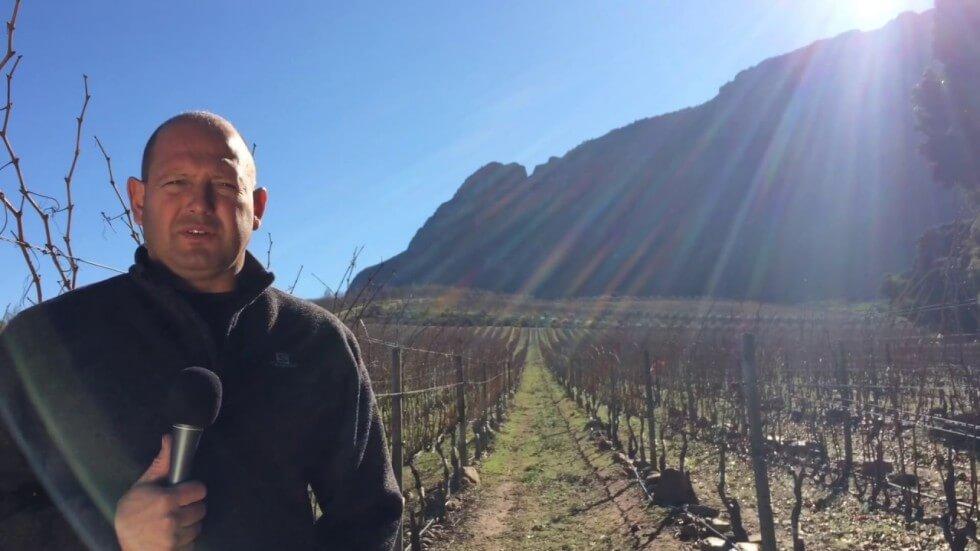 Schultz Family Wines